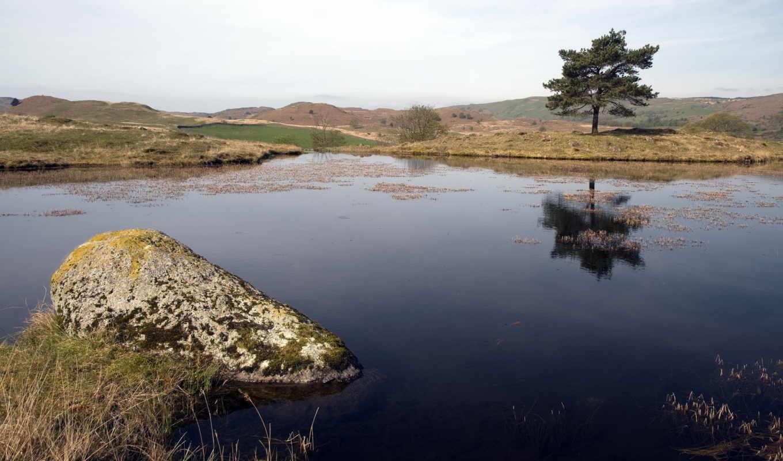 озеро, дерево, природа, пейзаж, картинка, картинку, мыши, кнопкой, так, же,