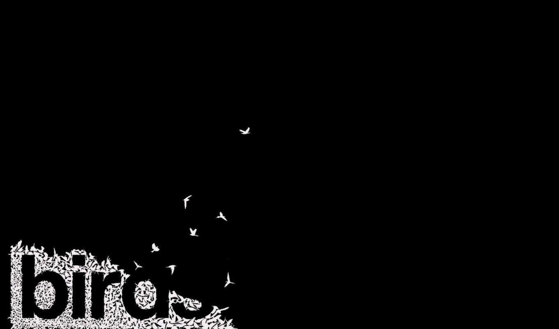 птицы, надпись, минимализм, белое, чёрно, картинка,