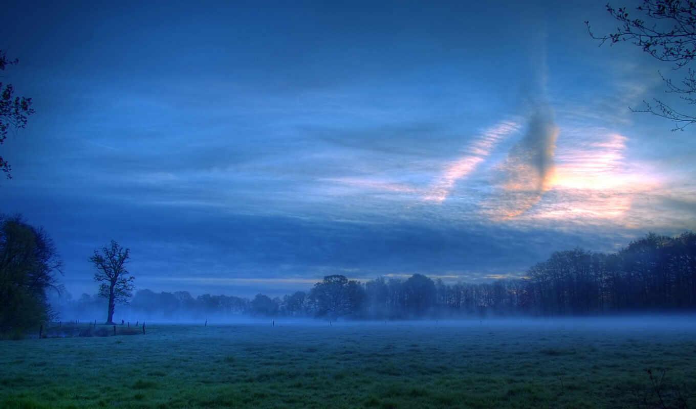 priroda, природа, пейзаж, настроение, landscape, lug, вечер, красивый