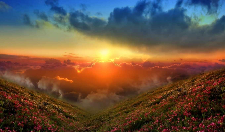 небо, закат, sun, природа, landscape,