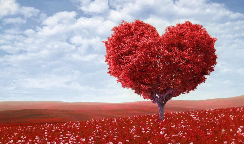 que, corazón, forma, amor, love, more, por,