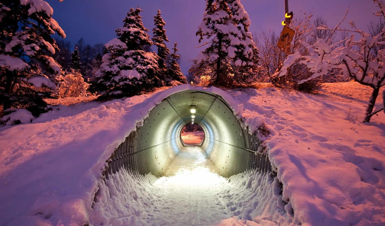 диких, животных, под, дорогой, предназначенный, туннель, финляндия, прохода,
