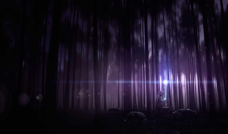 ночь, лес, чаща, волки, деревья, капюшон, человек, арт,