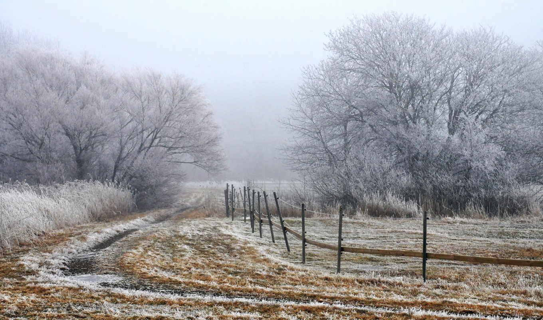 поле, landscape, туман, забор, утро, макро,