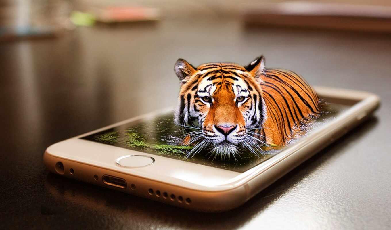 тигр, отображаться, сюрреализм, ди