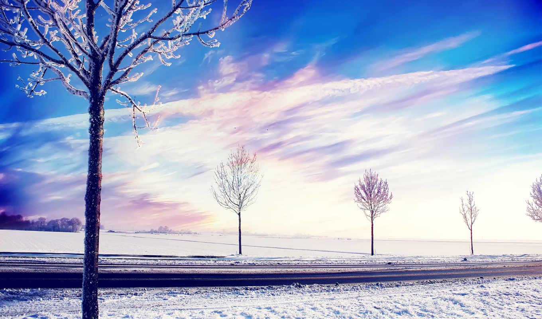 снег, winter, trees, landscape, природа,