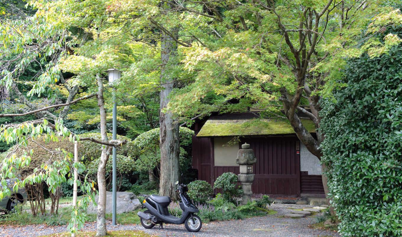 природа, стран, мб, мира, японию, фотопутешествие,