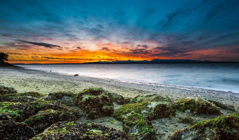 камни, сиэтл, вашингтон, пляж, море, сша, берег, мох, картинка, закат,