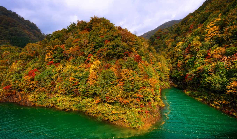 осень, япония, горы, озера, озеро, краска, тазава, лес,