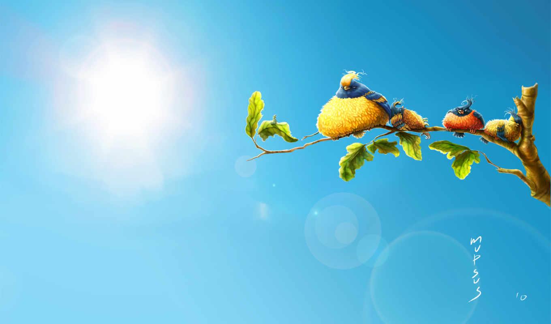summer, тепло, совершенно, категория,