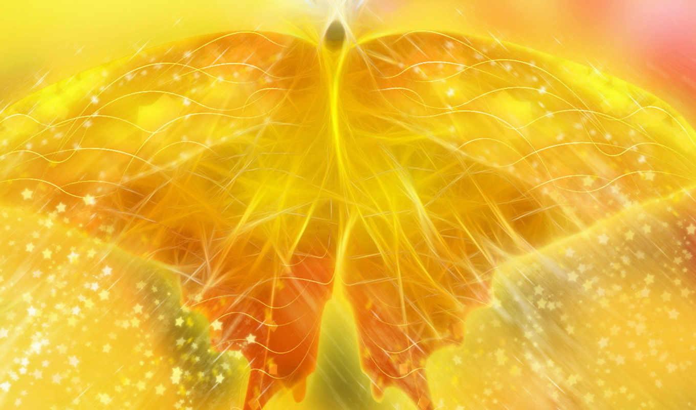 бабочка, желтая, yellow, подборка, прекрасных,