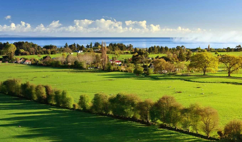 деревья, море, пейзаж, природа, тень, трава, зелень, свет, вода, небо, дома, облака,