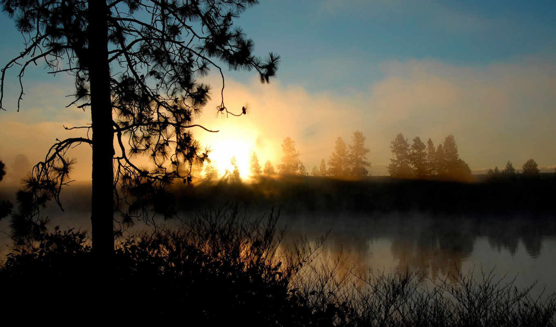 ,, небо, восход солнца, атмосфера, рассвет, утро, солнечный свет, солнце, дерево, туман, атмосфера земли,  1080p, , закат