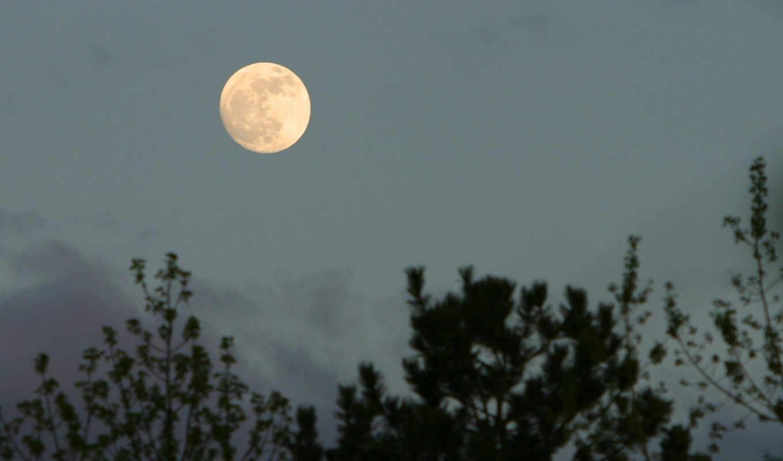 луна, природа, sky, moon, hd, небе, добавления, доступные, script, дата, разрешения, widescreen, добавил, чтобы, pix, небо,