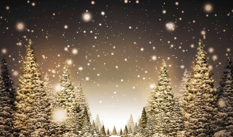 новогодние, дек, красивые, открытки, прикольные,