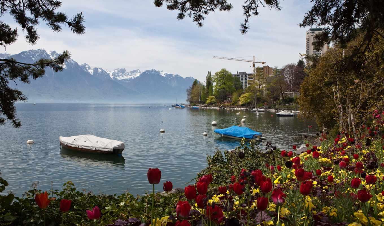 картинка, горы, природа, озеро, montreux, швейцария, tulips,