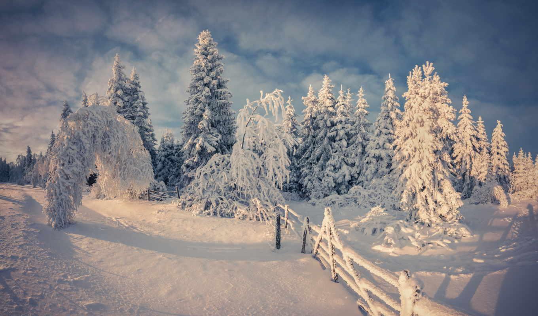 winter, снег, дней, широкоформатные, description, природа, ago,