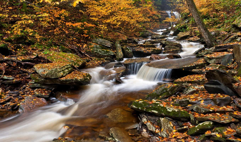 park, водопады, pennsylvania, state, glen, ricketts, природа,