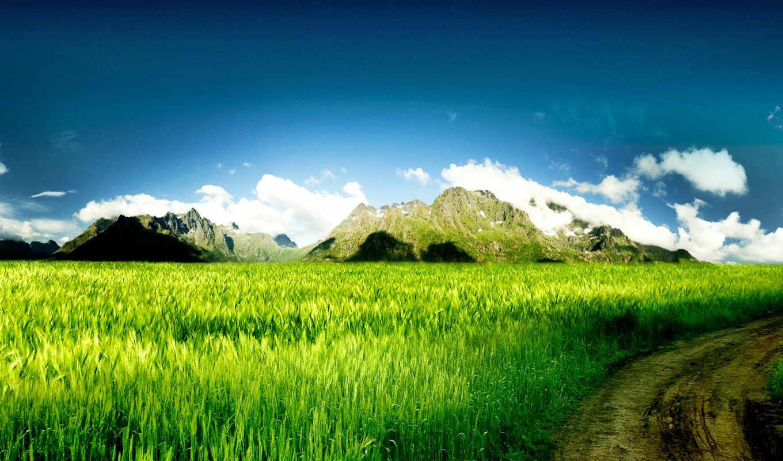 природа, красивая, природы,