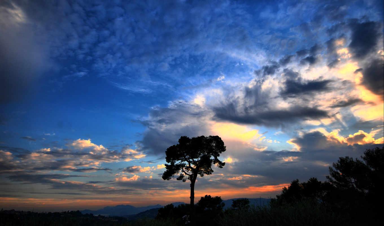 небо, красивое, дерево, загрузил, мэри, природа, закат,