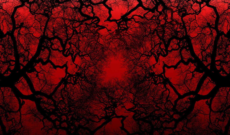 ветки, дерево, black, природа, кривые, дек,