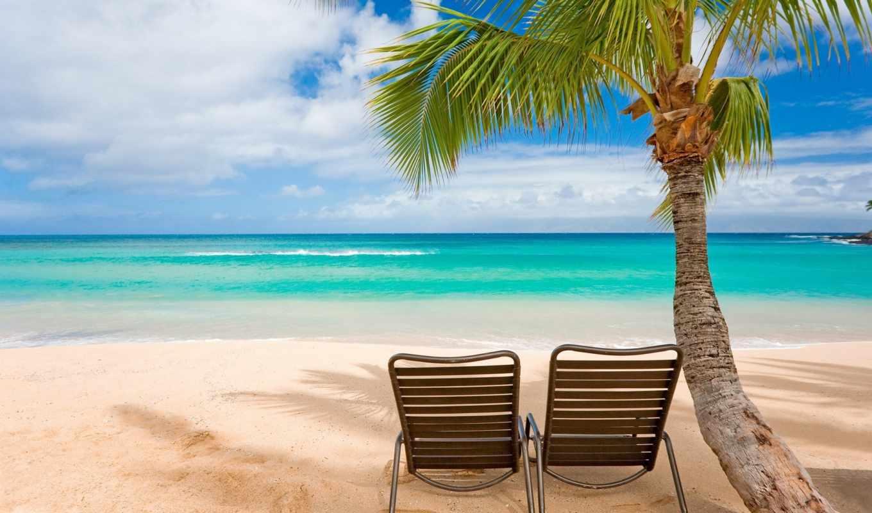 пляж, море, пальмы, фотообои, небо, песок, моря, берег, острова,