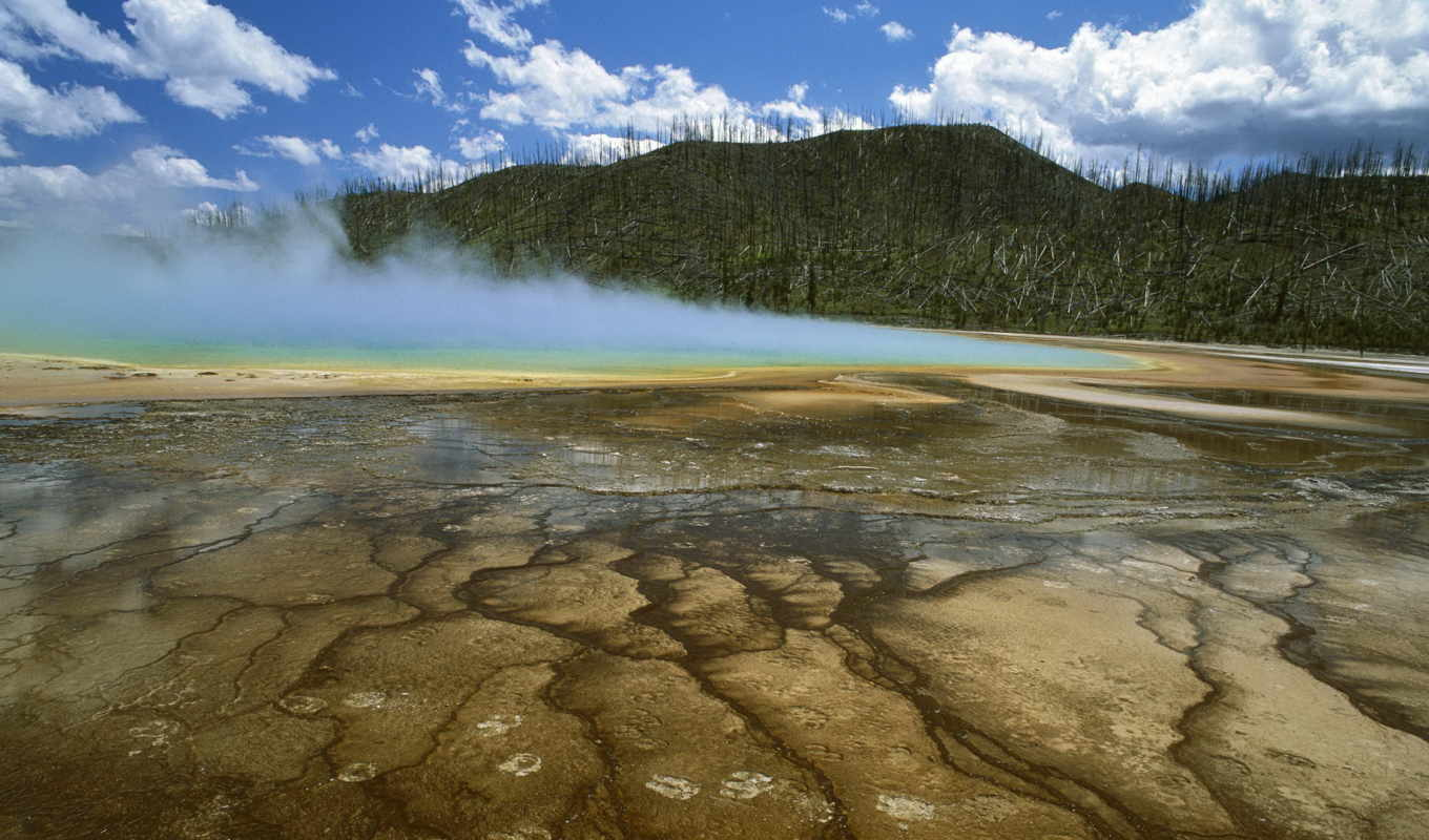 wallpaper, national, yellowstone, park, hd, montan