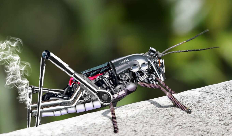 robot, кузнечик, металл