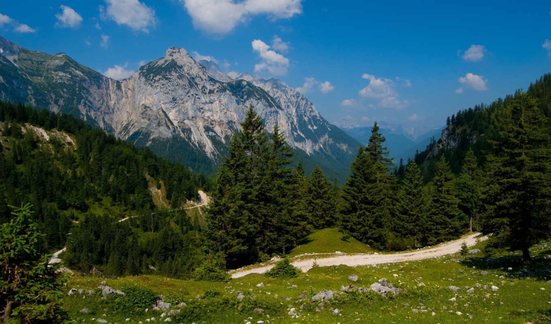 горы, лес, природа, дорога, гора, закат, usa, европа, ocean, water,