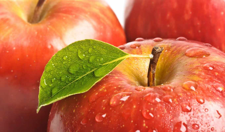 apple, drop, качественные, супер, meal, permission, картинка, positive, high