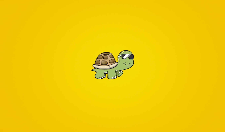 черепаха, очки, солнечный,