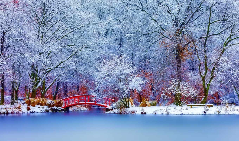 коллекция, зарегистрируйтесь, мосты, contact, руб, войдите, красивые, россия,