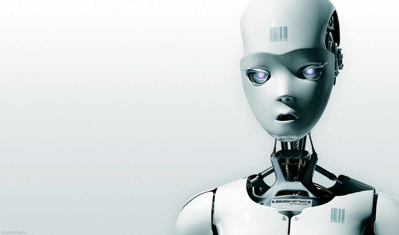 robot, robots, txt, белый, добавит, wordpress, baz, оптимизации, плагина, данных, bez,