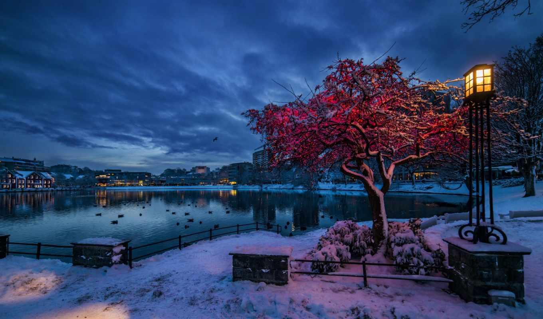 норвегия, winter, снег, ставангер, вечер, lantern, ругаланн, сумерки, огни,