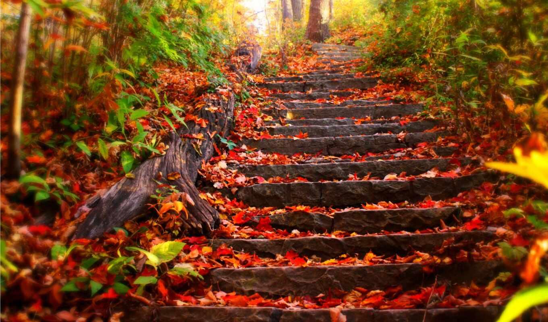 настроение, осенние, осеннее, об, осень, день, осени, равноденствия, осеннего, году, погоды,