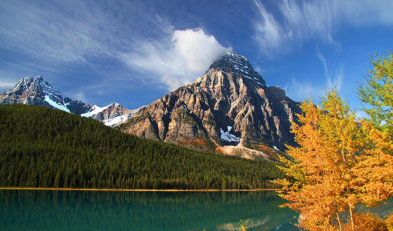 озеро, лес, горы, деревья,