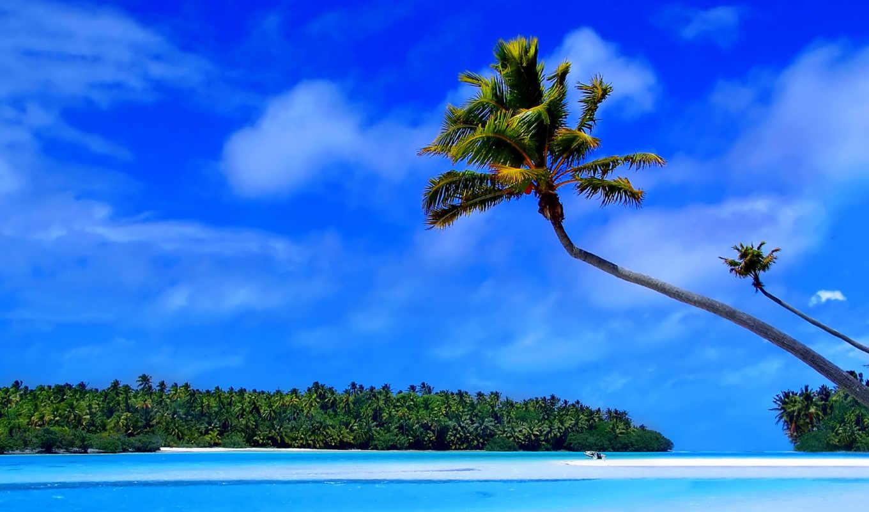 острова, каймановы, еда, фон, desktop, free, цены, фотообои, природа,