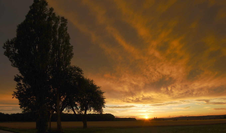 вечер, garland, trees, бесплатные, пейзажи -, air, красивые, фотографий, неба, трава,