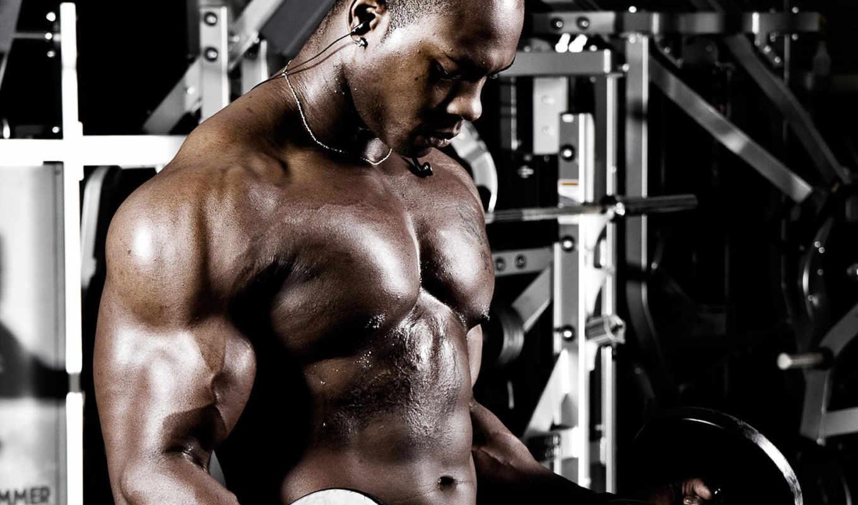 fitness, сайта, создание, you,