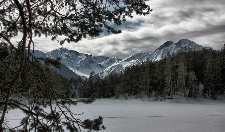 лес, горы, снег, winter, природа, лесу,