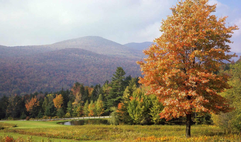 осень, горы, кубань, осеннее, дерево, рисунки, рубрики, картинка, красивая,