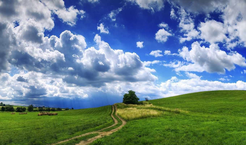 трава, облака, дерево, дорога, тучи, холмы, landscape, сено,