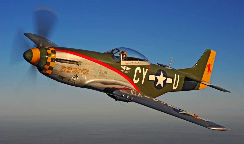 mustang, gunfighter, polet, flyinggoober, caf, was, самолет, сила, air, commemorative,