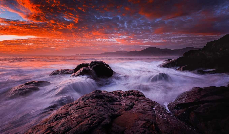 ocean, переполох, птичий, waves, уровень, пляж, you, ответить,