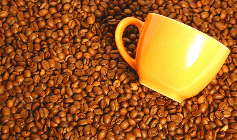 кафе, grãos, parede, papel, papéis, copo, imagens,