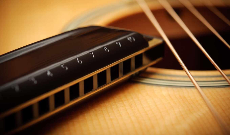 гитара, гармошка, губная, макро, струны, акустика, игры, губной, уроки,