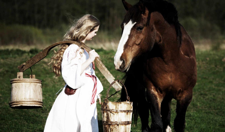 horse, коллекция, кони, животные, animal, horses,