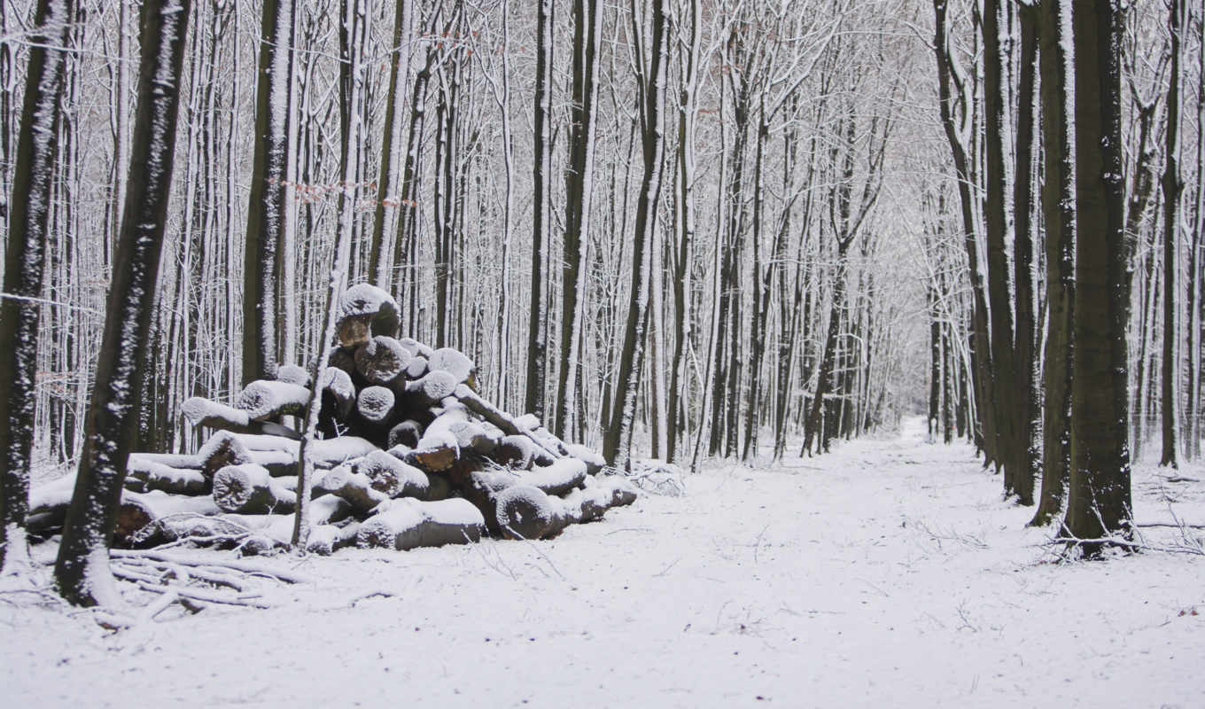 blasphemy, places, snowy, winter, image, pack, картина, snow, gallery, garcya, nature,