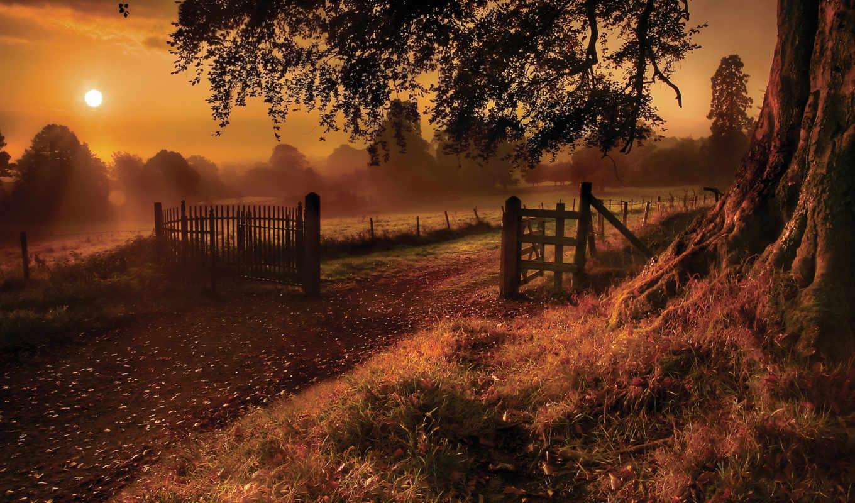 картинка, gate, забор, road, part, туман, desktop, деревья, трава, вид, солнце, красиво, крупно, дерево, небо, лучи, rural,