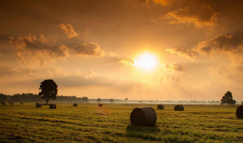 поле, закат, природа, landscape, сено,